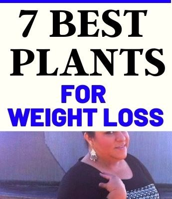 The 7 Best Plants For Weight Loss